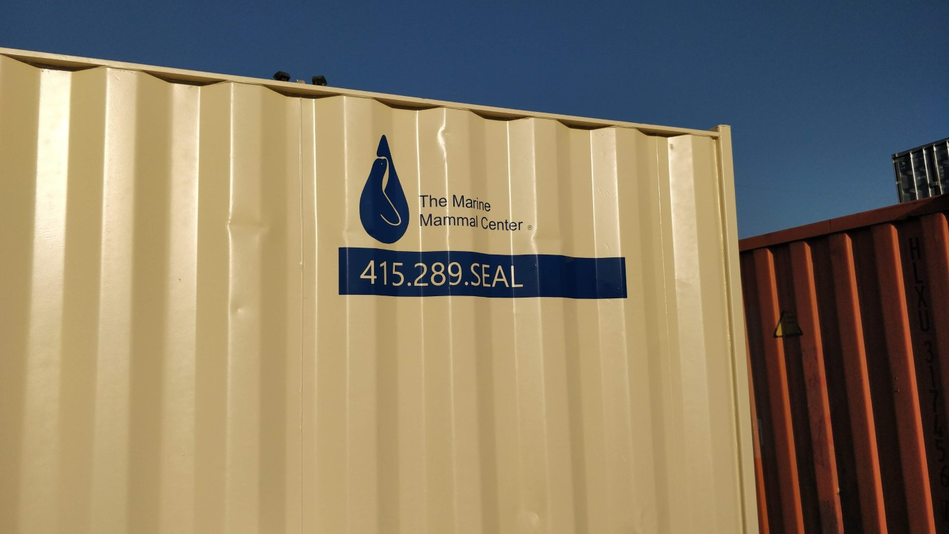 Vinyl logo on 10ft shipping containers for sale